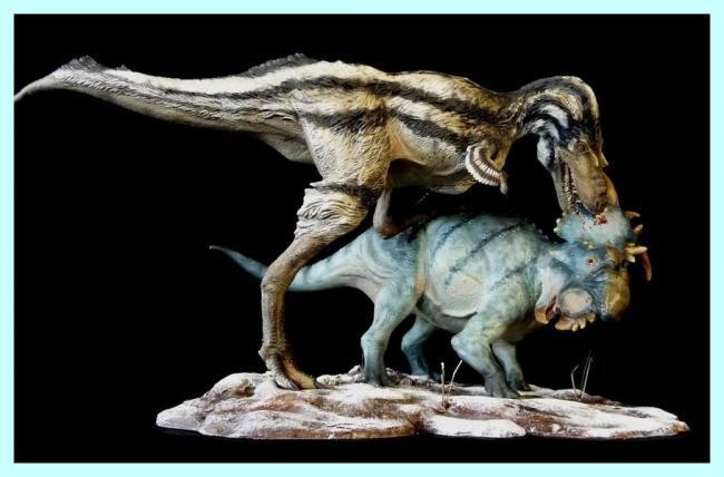 pachyrhinosaurus vs carnotaurus - photo #37